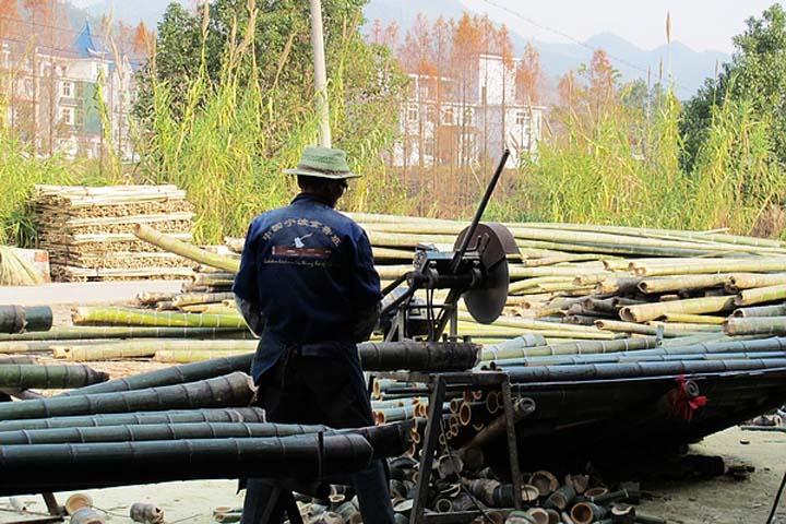 bamboo chopping machine applications