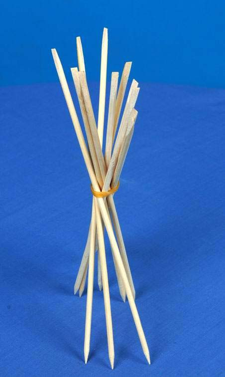 bbq sticks made by Shuliy machinery